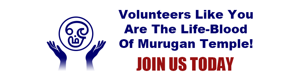 Join Us and Volunteer